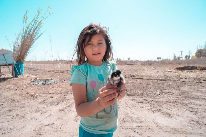Fueron entregados los primeros módulos productivos avícolas del Programa Crianza Familiar