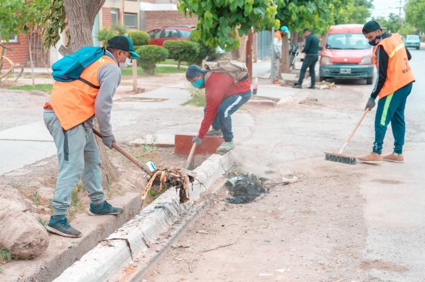 Se están realizando nuevas tareas para evitar la propagación del Dengue